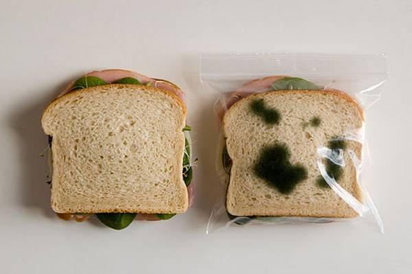 inventos-raros-bolsa-almuerzo-antirrobo