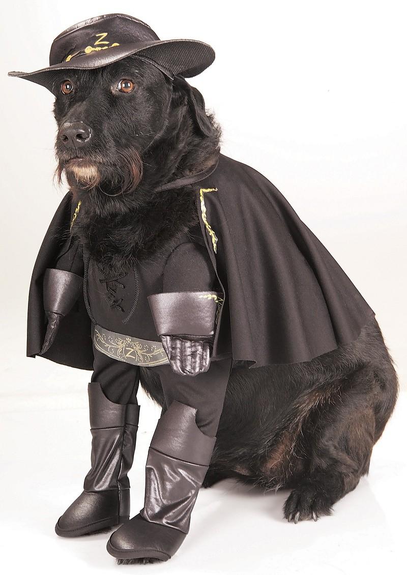 Perros disfrazados de superheroes