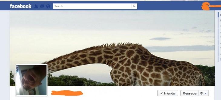 portada-de-facebook-jirafa-cabeza-hombre