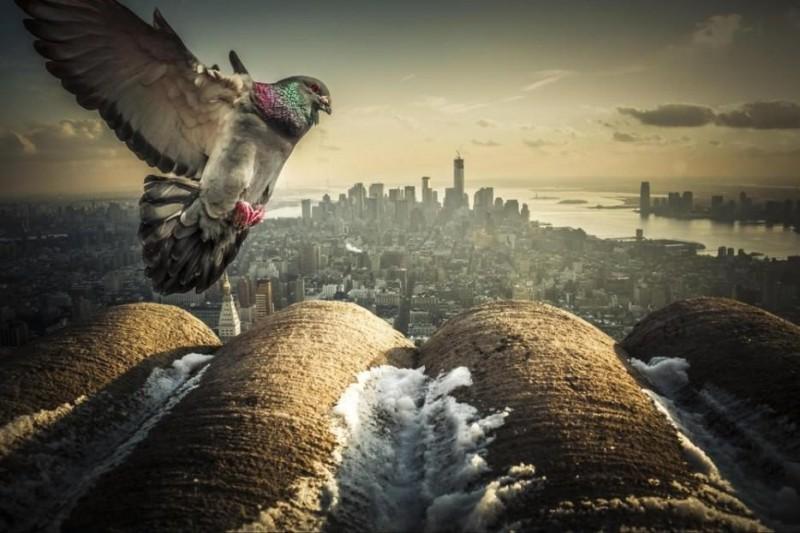 las-mejores-ciudades-del-mundo-nueva-york-usa-3