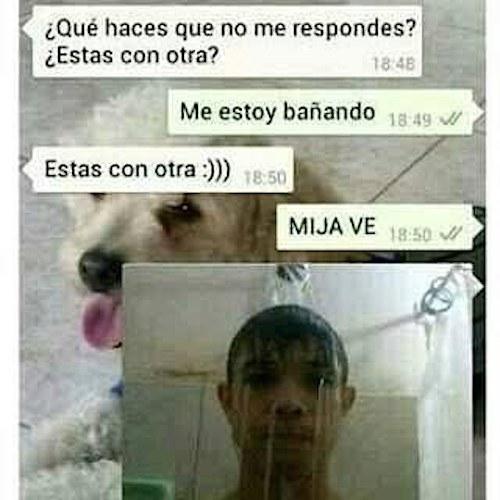 mensales-whatsapp-novias-celosas (7)